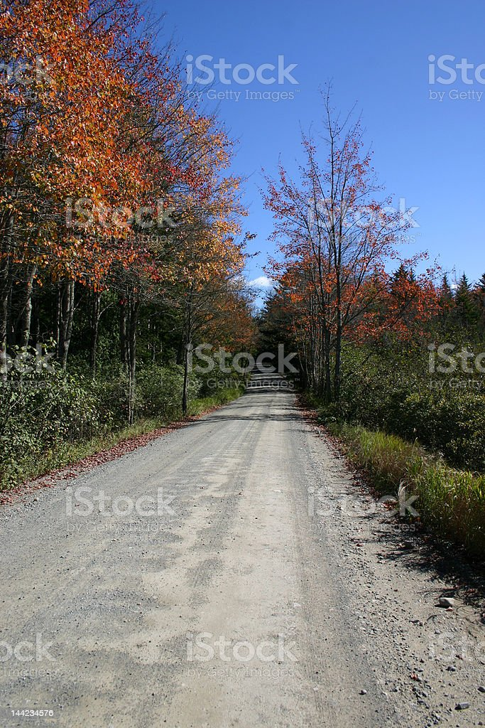 Backwoods Road - Autumn in Maine royalty-free stock photo