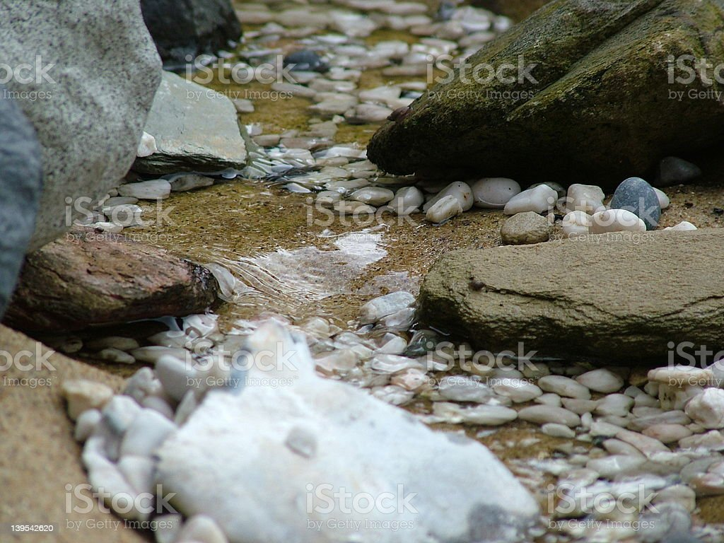Backyard creek royalty-free stock photo