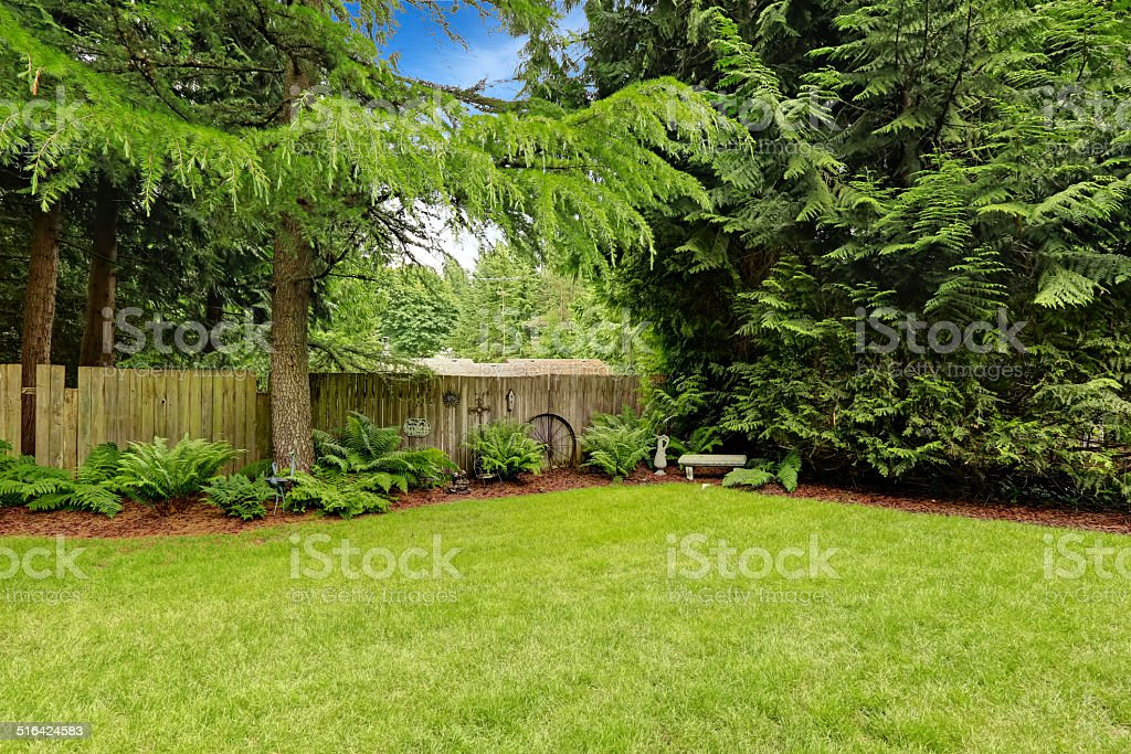 Backyard decoration idea. stock photo
