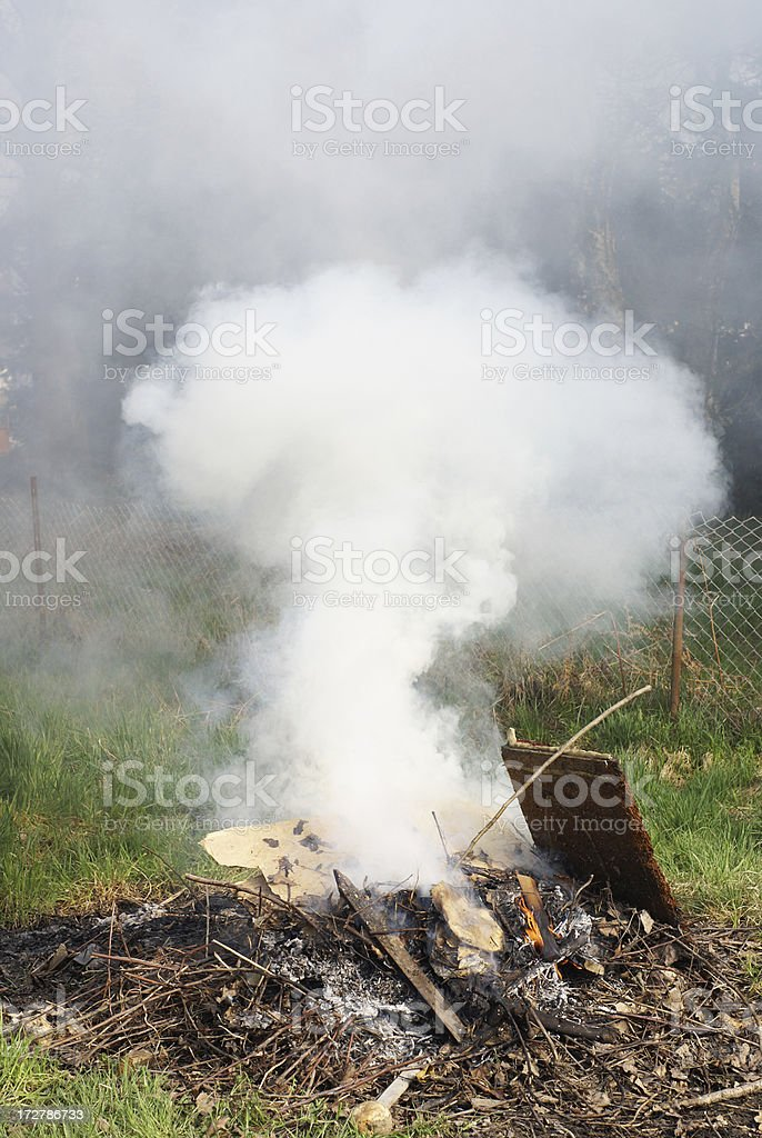 Backyard fire with lot of smoke royalty-free stock photo