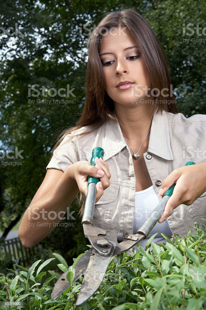 Backyard Gardener royalty-free stock photo