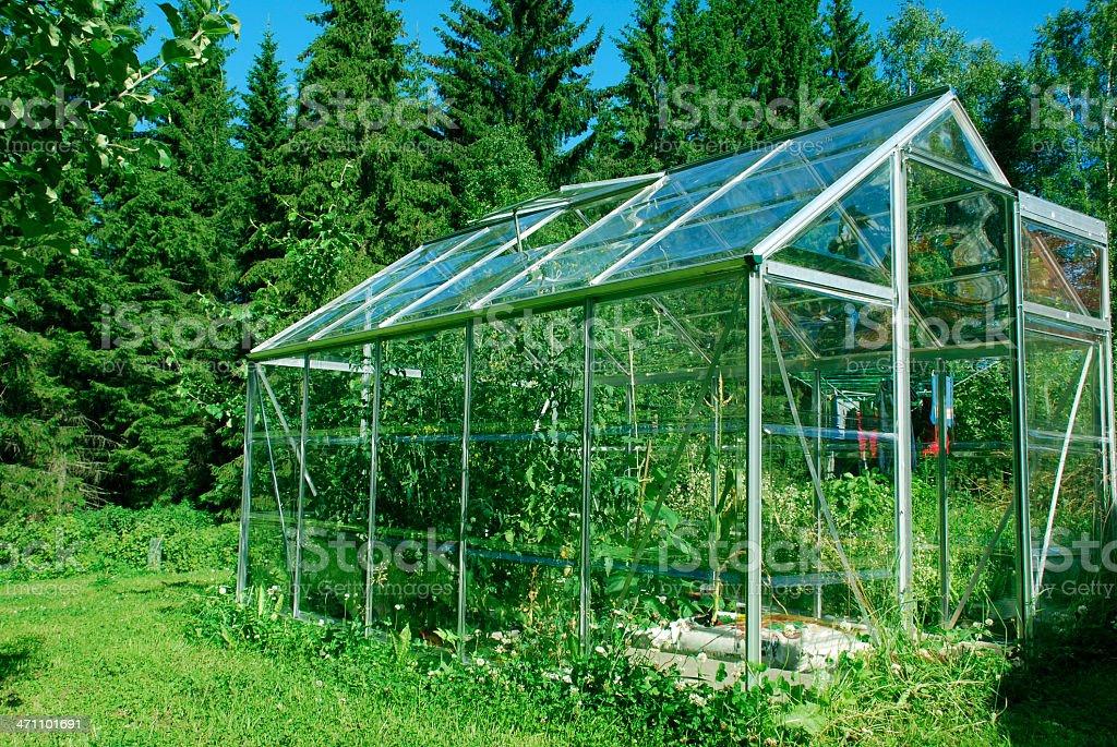 Backyard greenhouse royalty-free stock photo