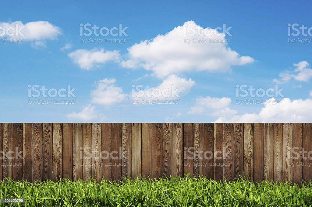 backyard in summer stock photo