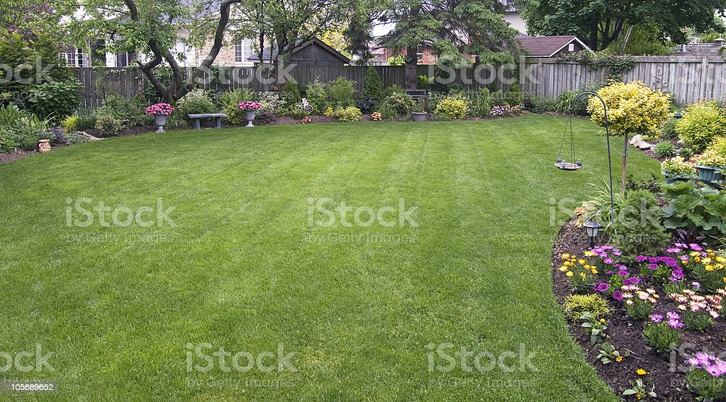 Backyard royalty-free stock photo