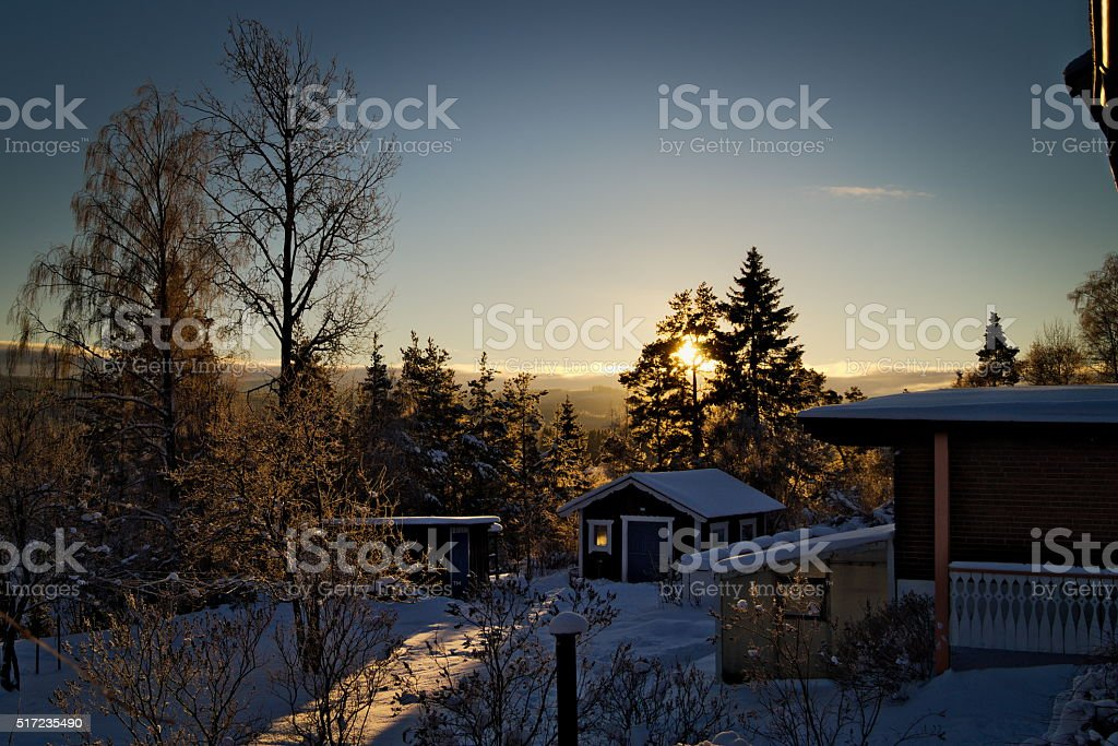Backyard stock photo