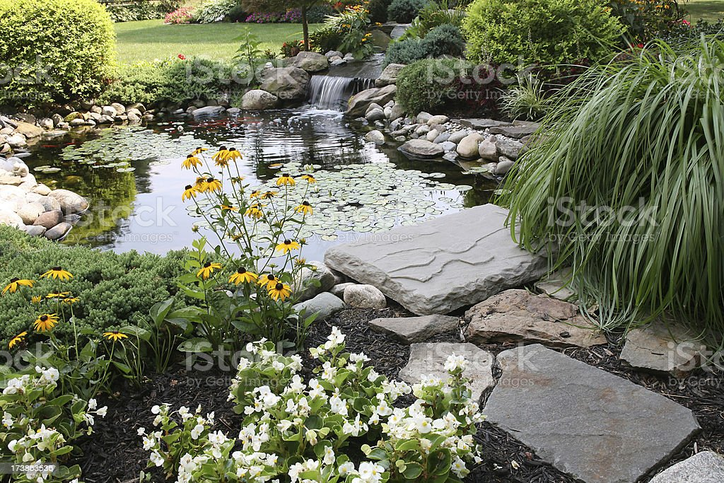 backyard pond and waterfall stock photo