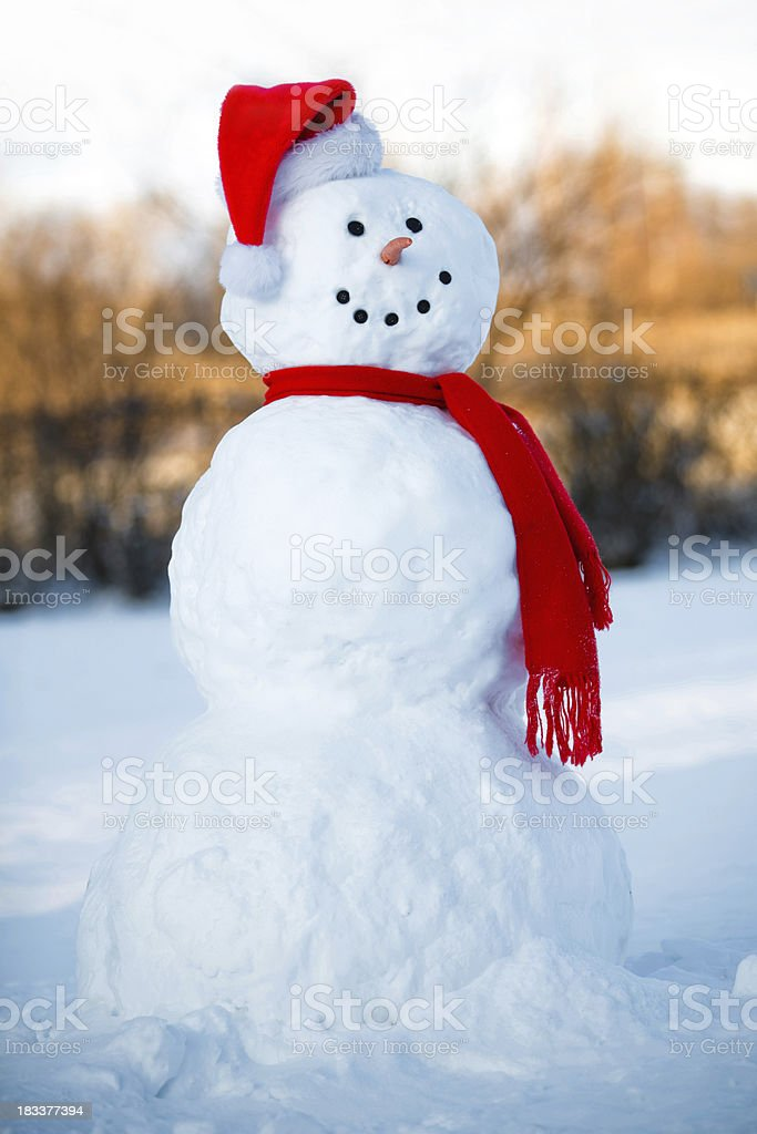 Backyard Snow Man stock photo