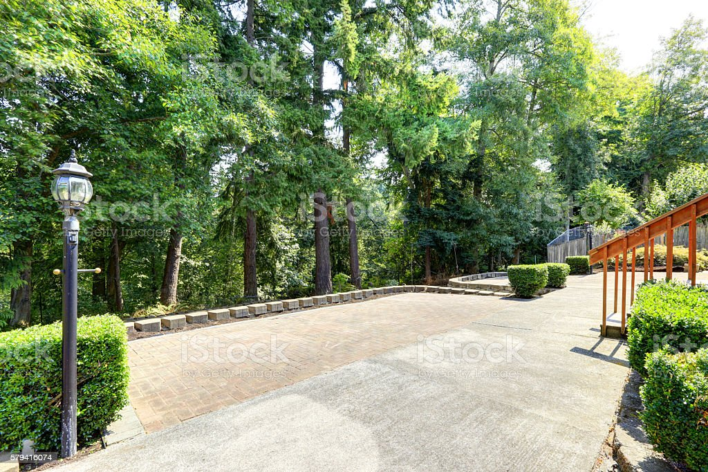 Backyard view with concrete floor and fir trees stock photo