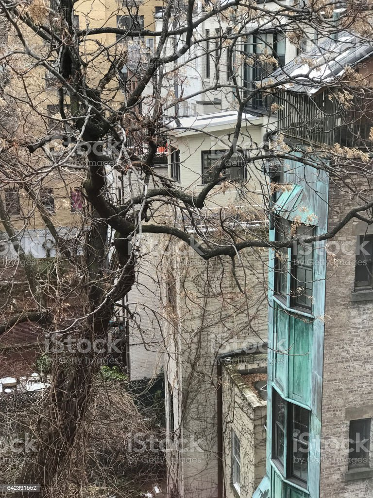 backyards in winter, Upper East Side, New York stock photo