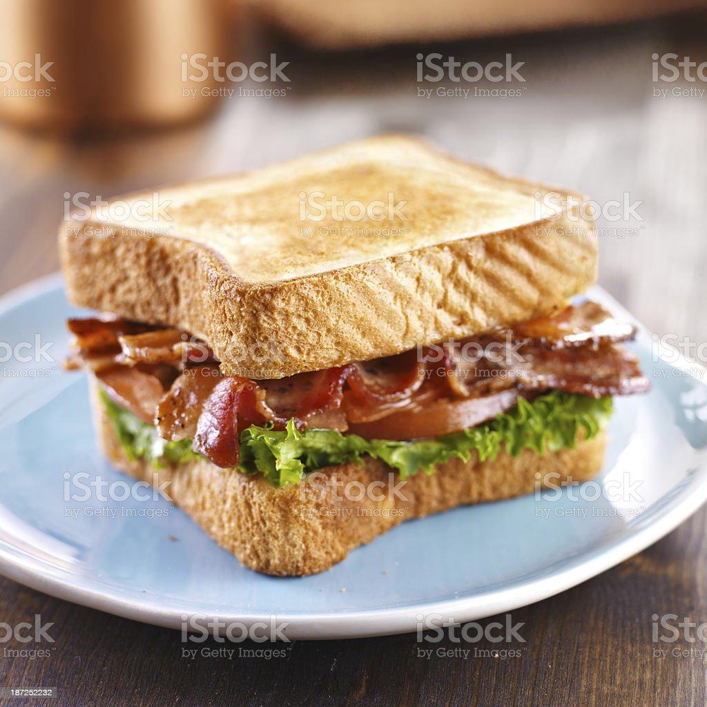 BLT bacon lettuce tomato sandwich stock photo