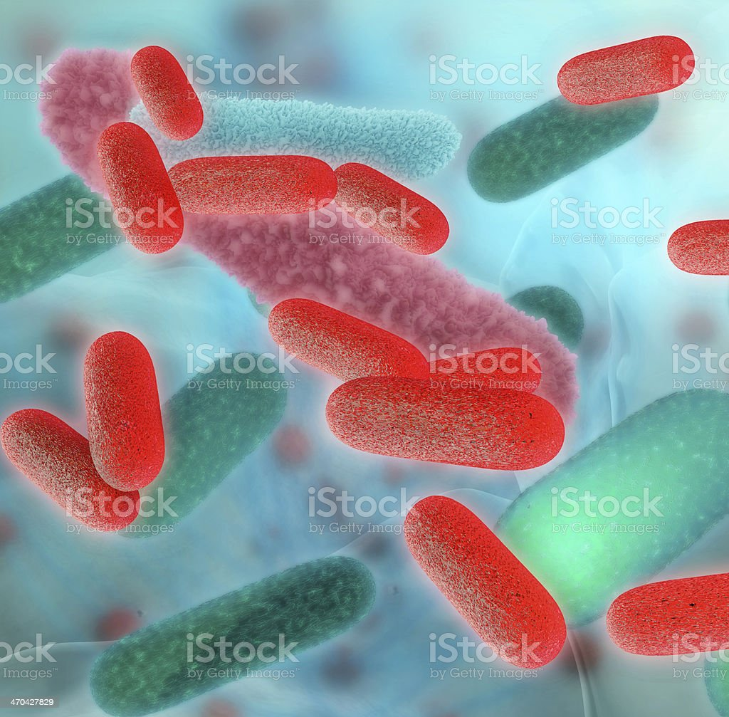 Bacteria - 3d rendered illustration stock photo