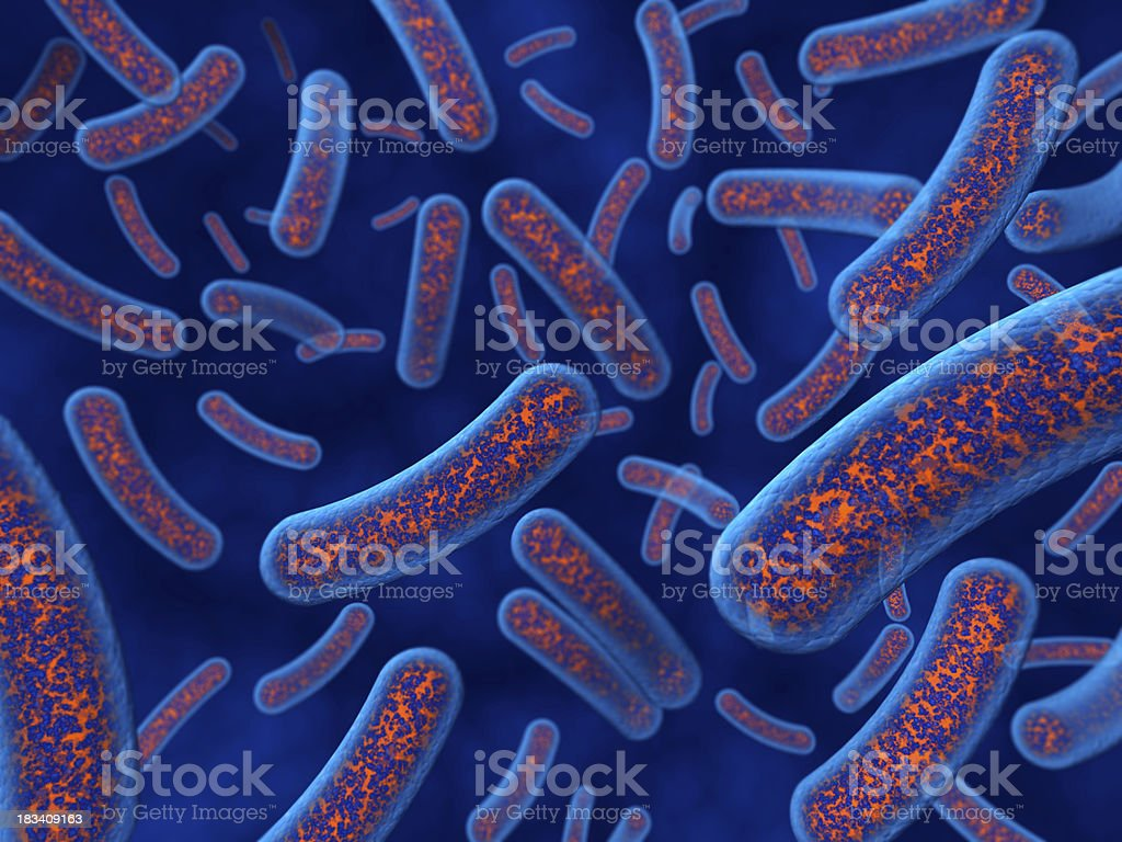 Bacteria closeup royalty-free stock photo
