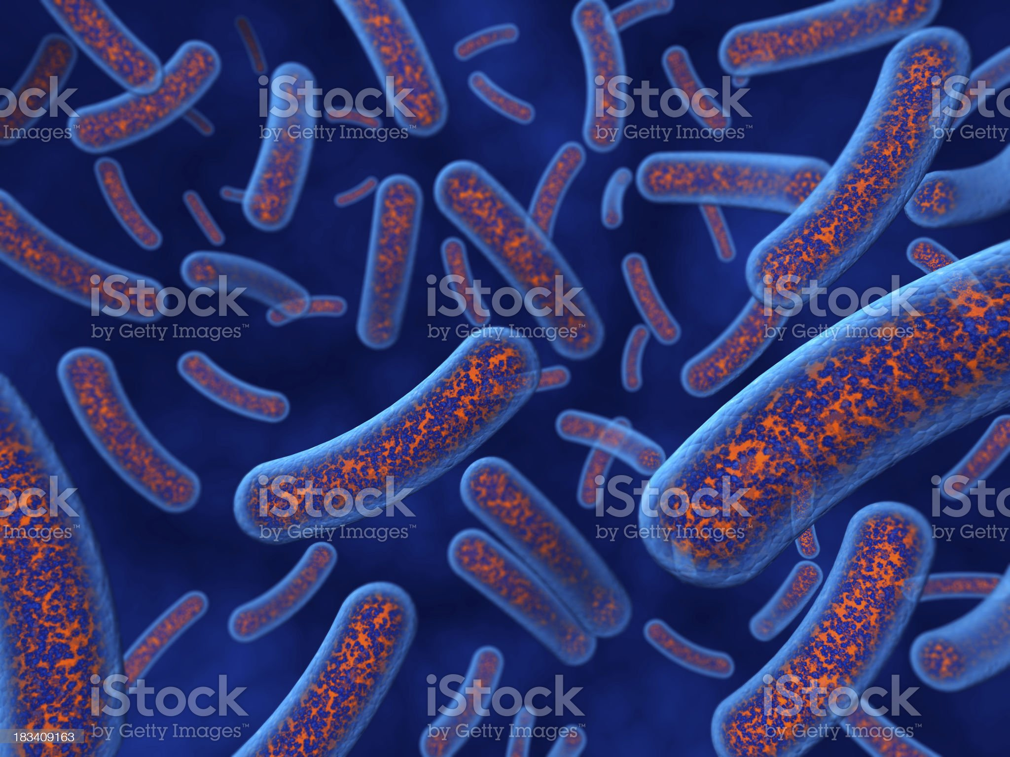 Bacteria closeup royalty-free stock photo