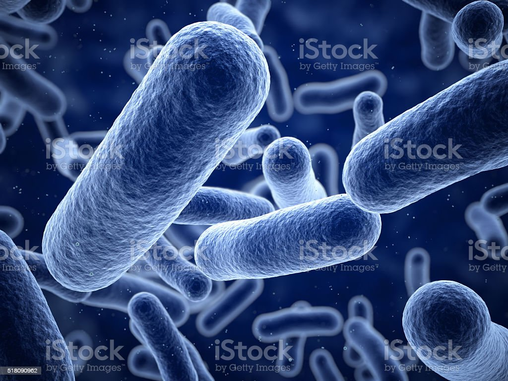 Bacteria closeup stock photo