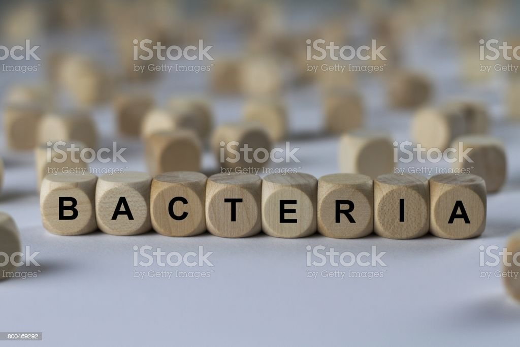 bacteria - cube with letters, sign with wooden cubes stock photo