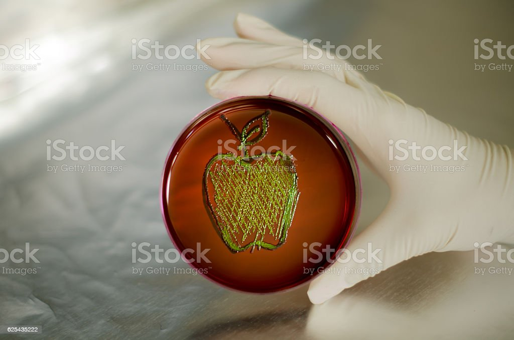 Bacteria growth in the shape of a green apple stock photo