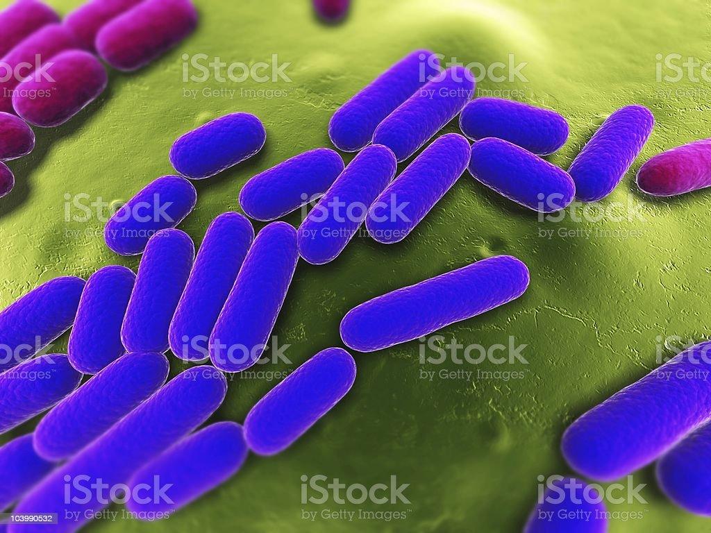 bacteria illustration royalty-free stock photo