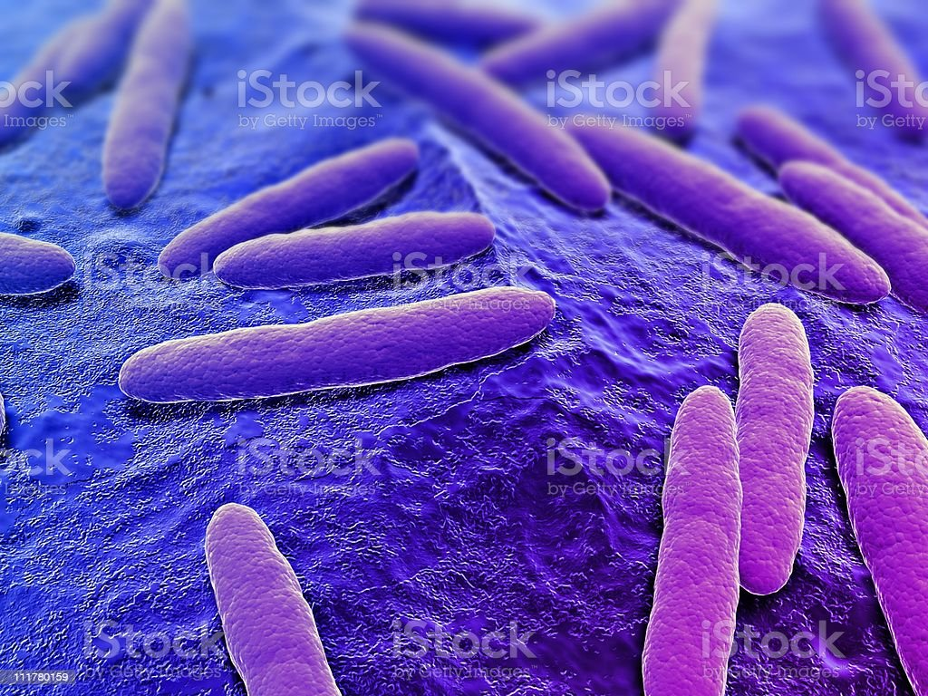 bacteria illustration stock photo