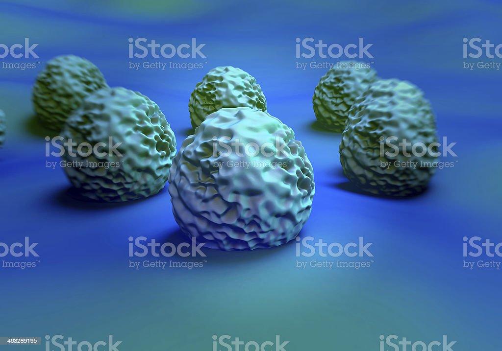 MRSA bacteria or superbug royalty-free stock photo
