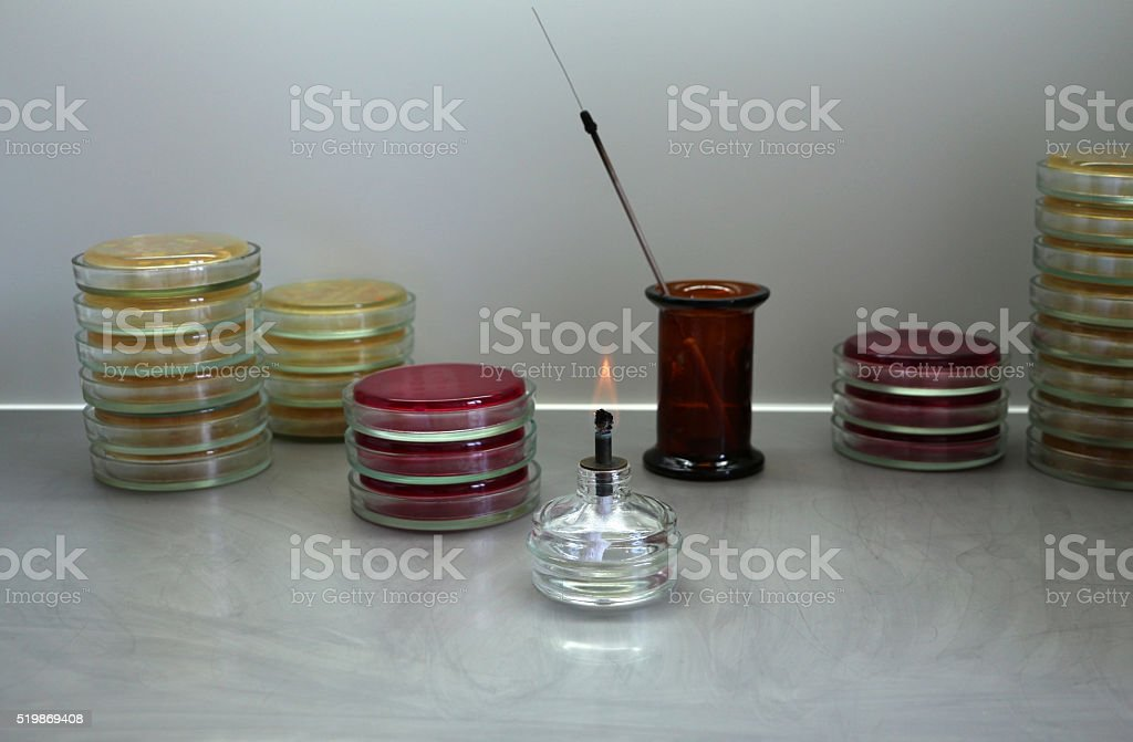 Bacteriological laboratory workplace overview closeup stock photo