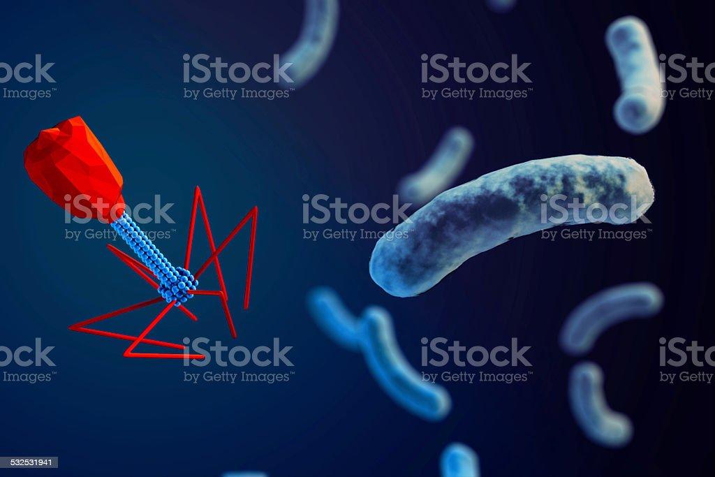 bacteriophage attacking bacteria stock photo