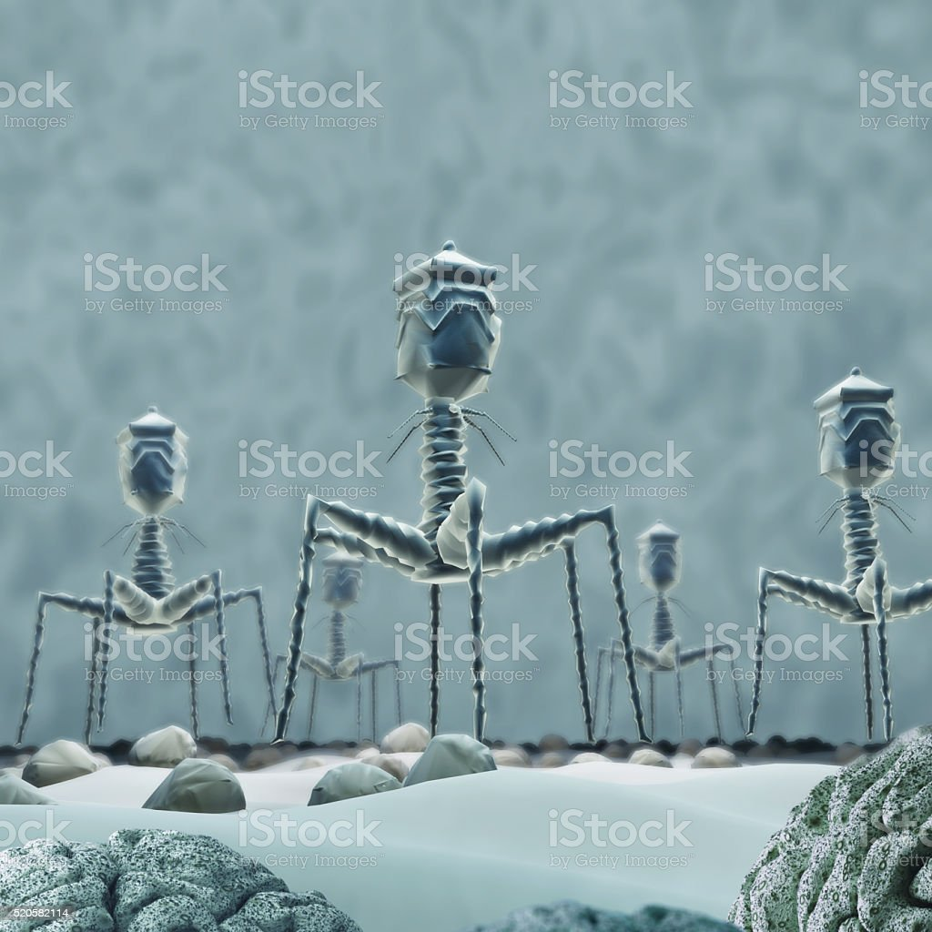 Bacteriophage T4 virus. stock photo