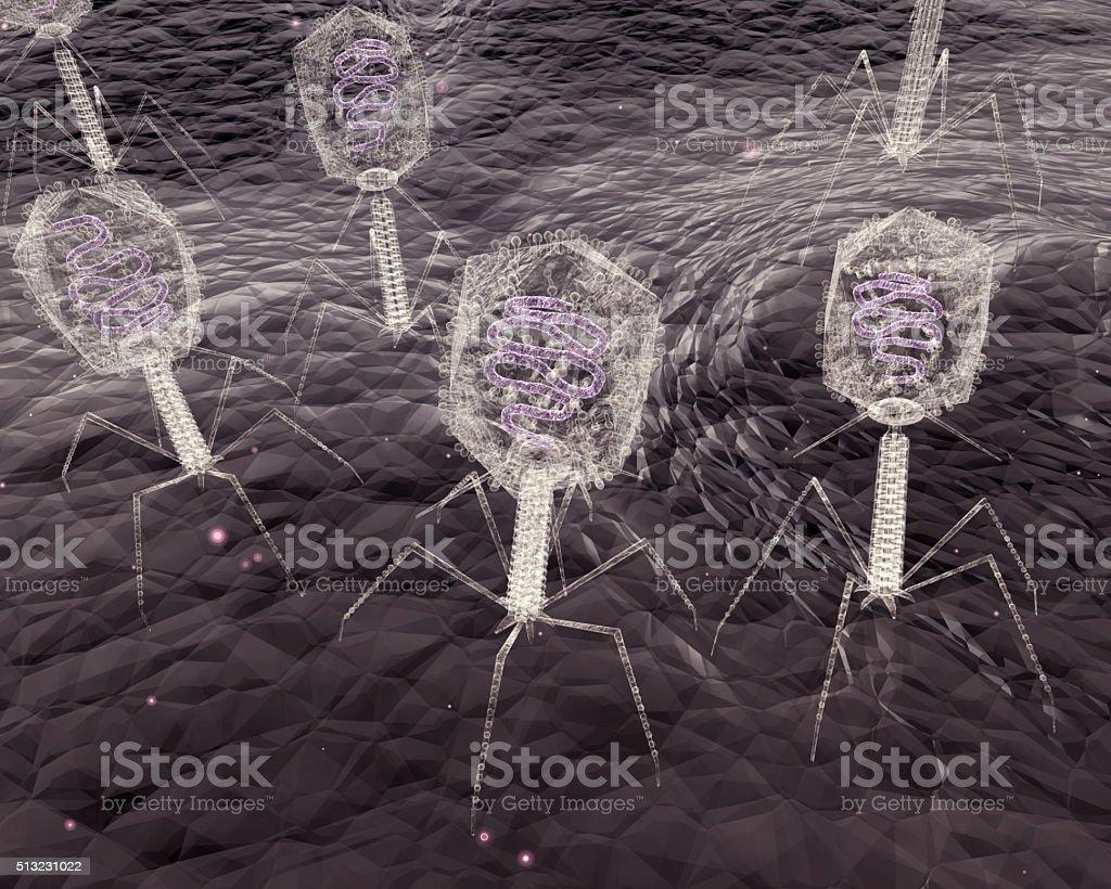 Bacteriophage Viruses stock photo