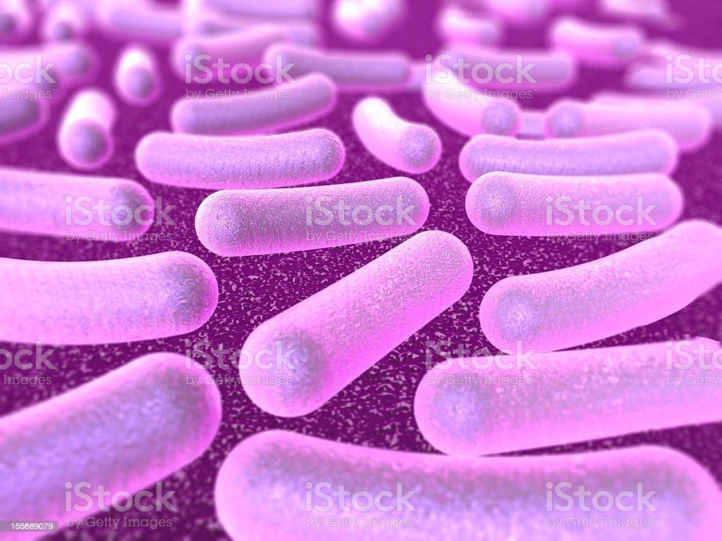 Bacterium royalty-free stock photo