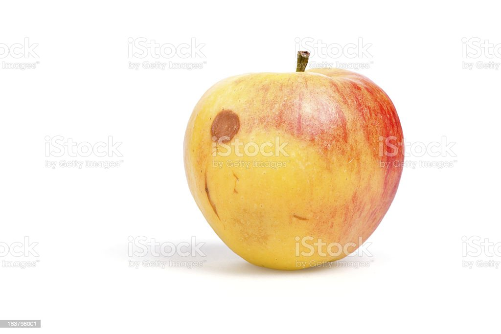 bad apple royalty-free stock photo