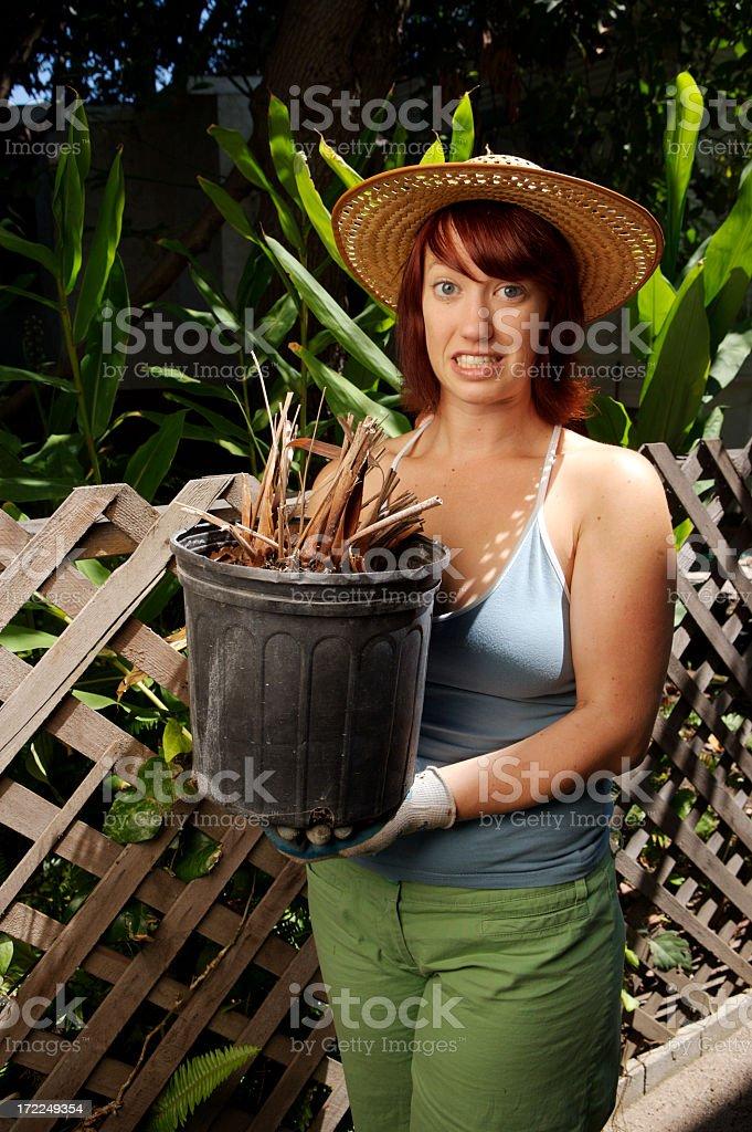 Bad Gardener stock photo