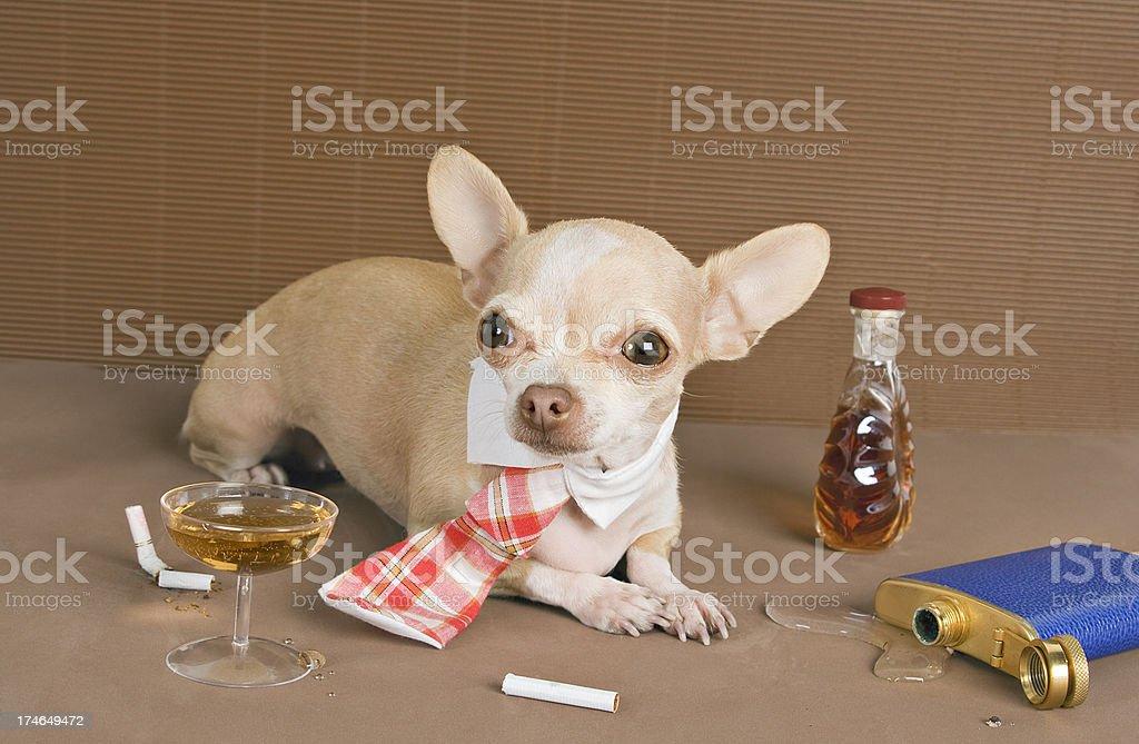 bad habits royalty-free stock photo