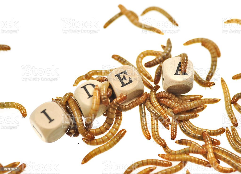 bad idea - eaten up stolen problems and opponents stock photo