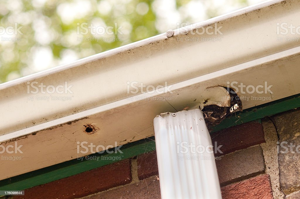 'Bad, Old Gutter on House' stock photo