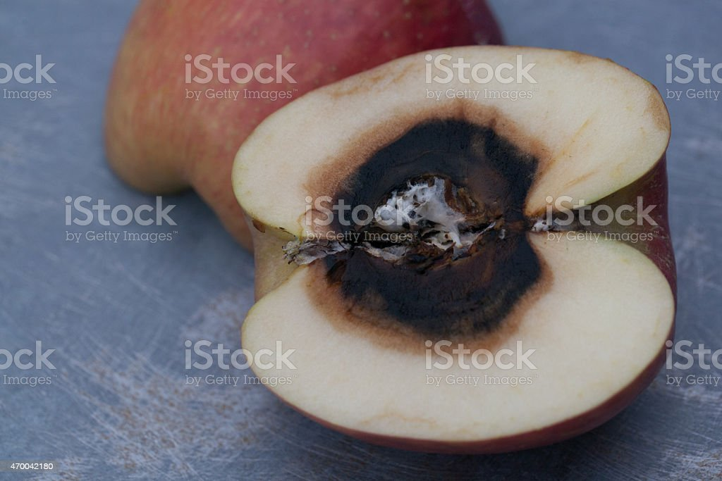 Bad to the core stock photo