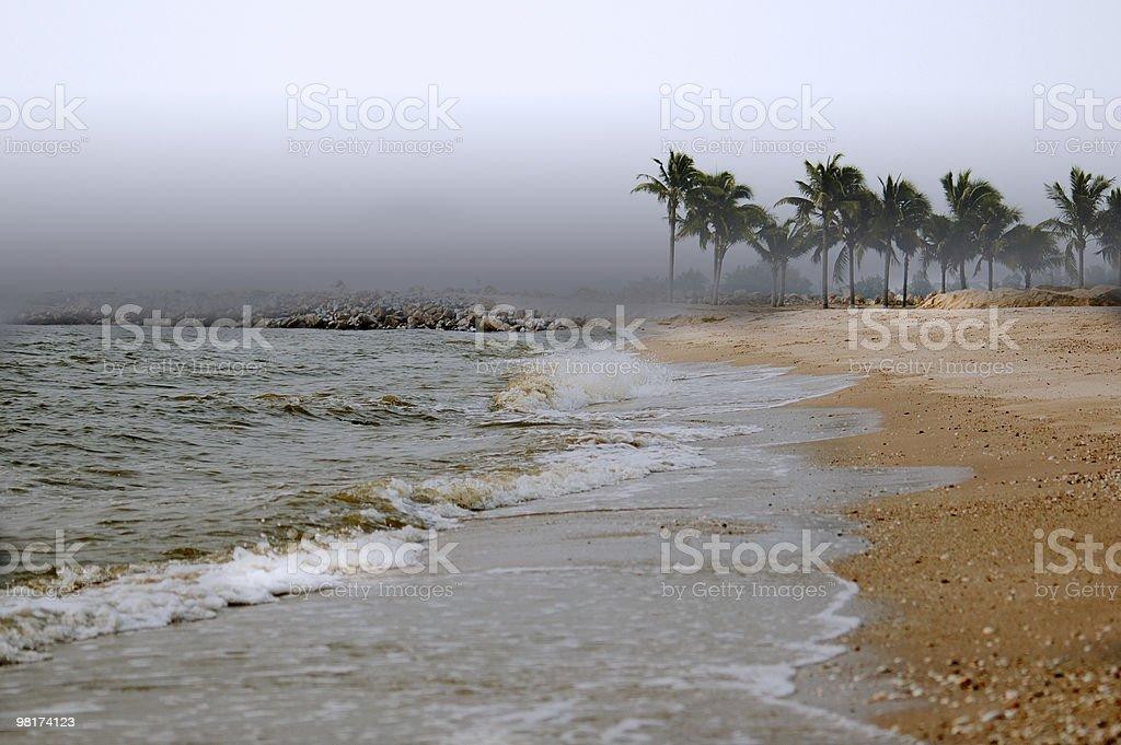 Bad Vacation royalty-free stock photo