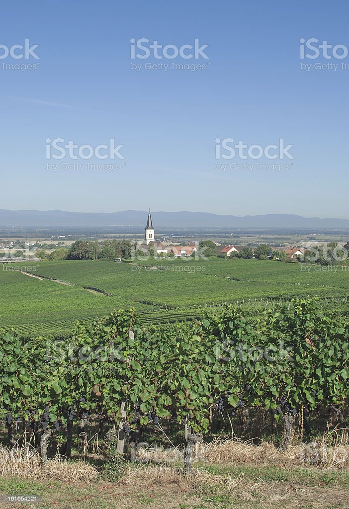 Baden Wine Route,Black Forest,Germany royalty-free stock photo