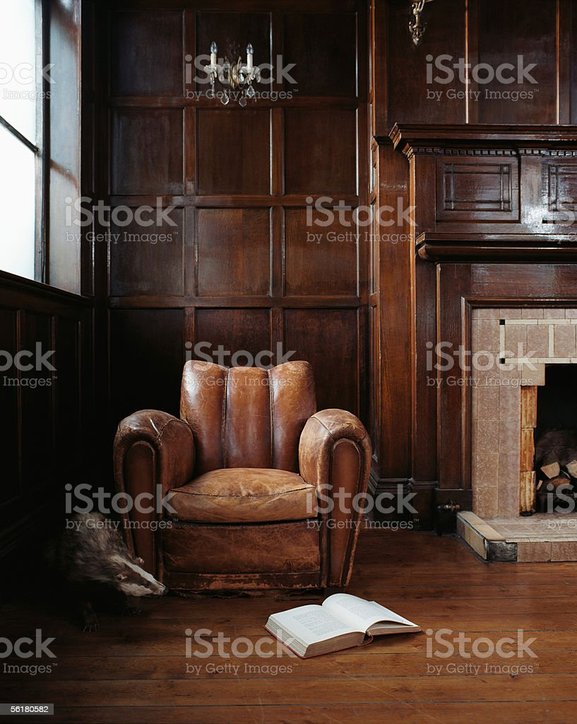 Badger emerging form behind armchair stock photo