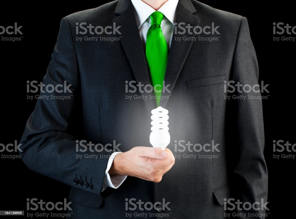 Badger of environment friendly energy royalty-free stock photo