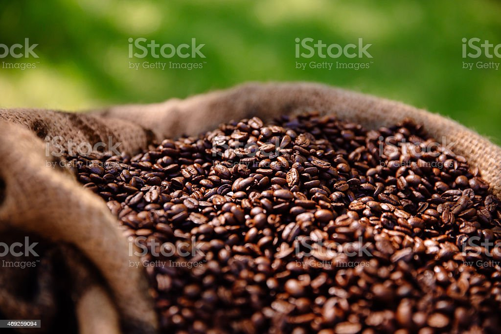 Bag of roasted organic coffee beans stock photo