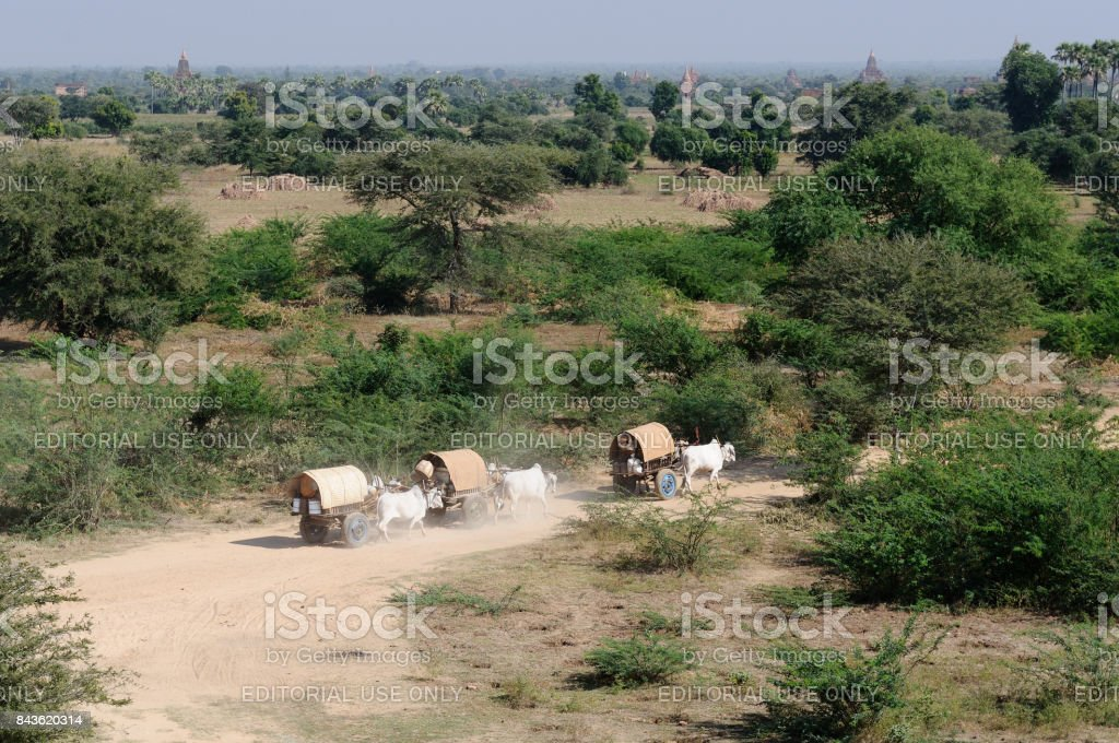 Bagan stock photo