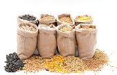 bags with cereal grains (oat, barley, wheat, corn, beans, peas)