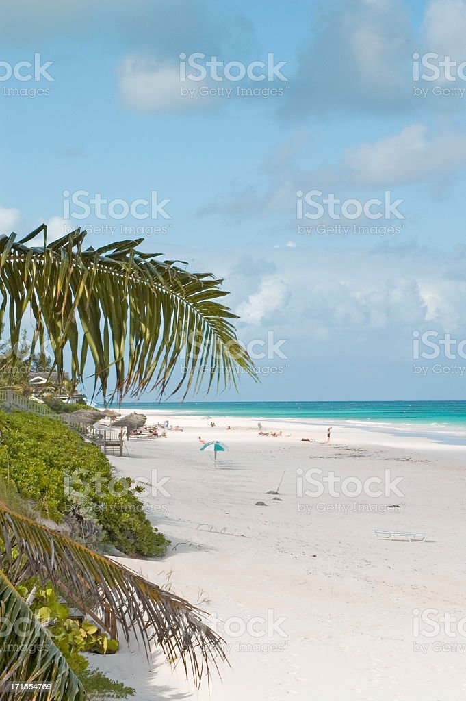 Bahamas, Harbour Island pink beach royalty-free stock photo