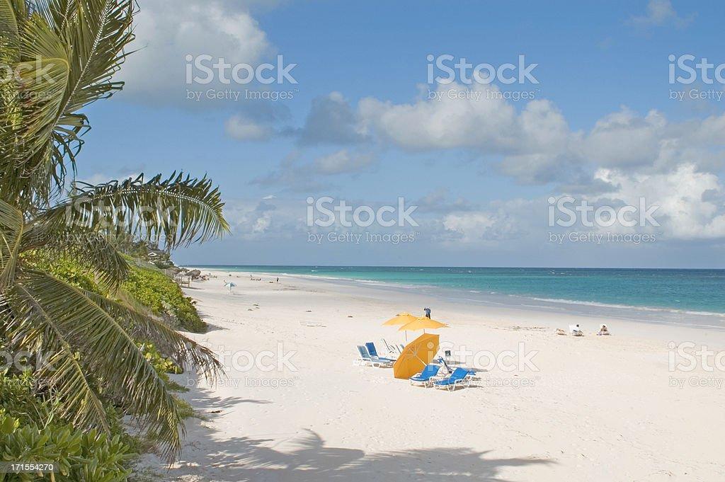 Bahamas, Harbour Island pink sands stock photo