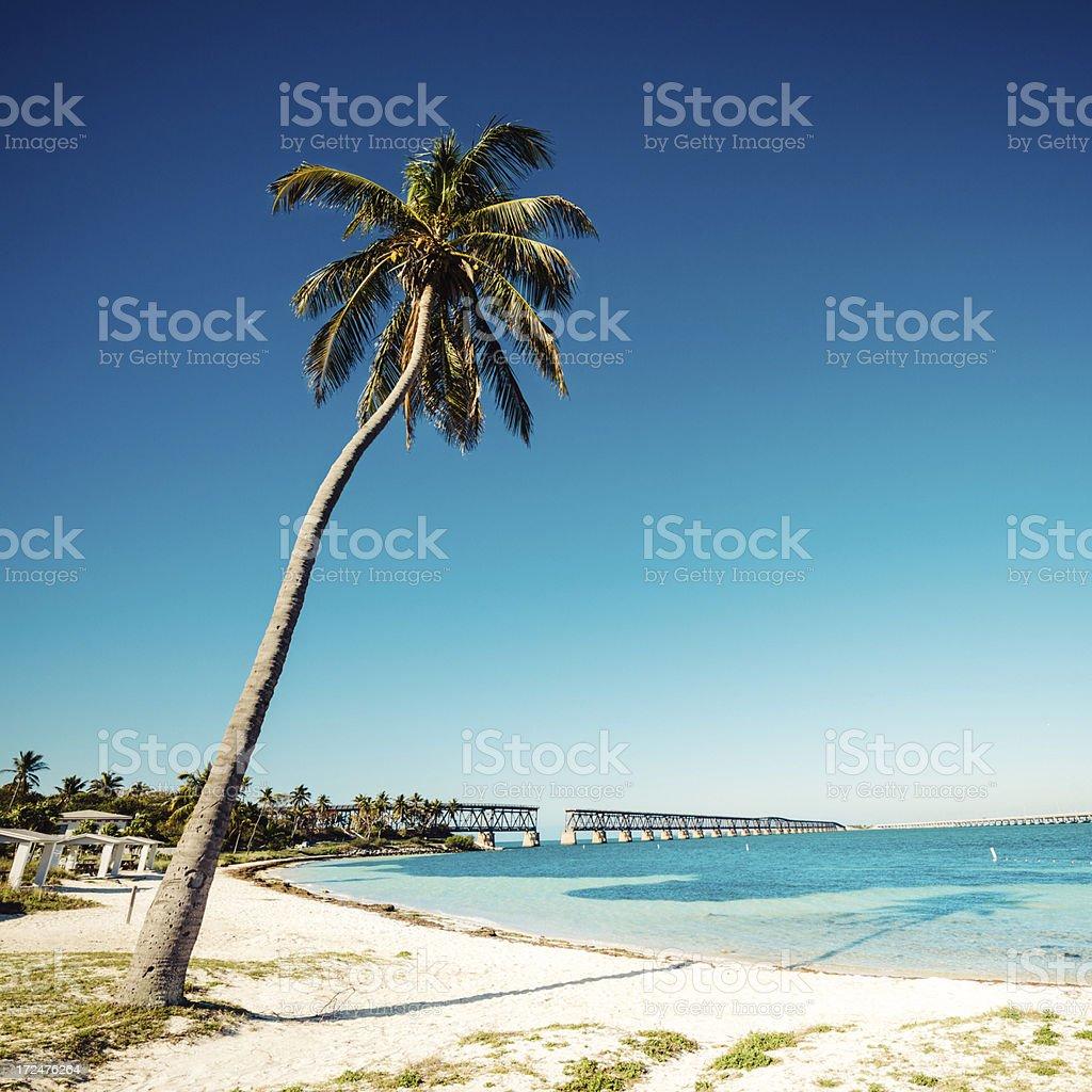 Bahia Honda State Park Florida royalty-free stock photo