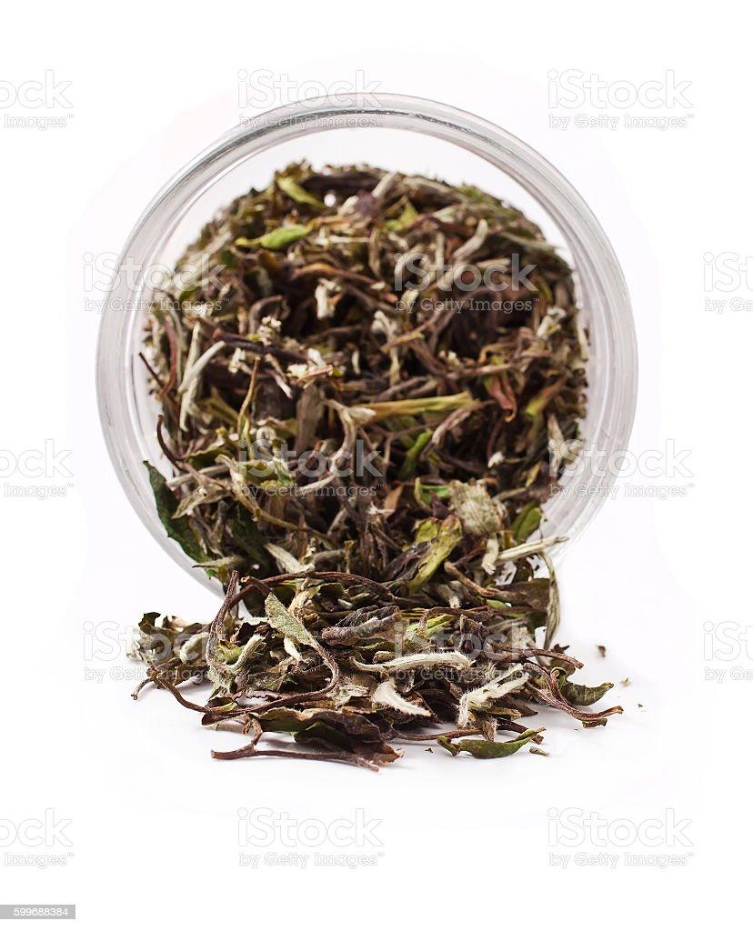 Bai Mu Dan chinese white tea stock photo