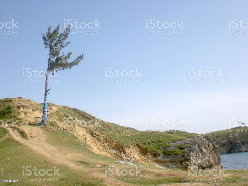 Baikal, island Olkhon. Tapes Hadak on trees stock photo