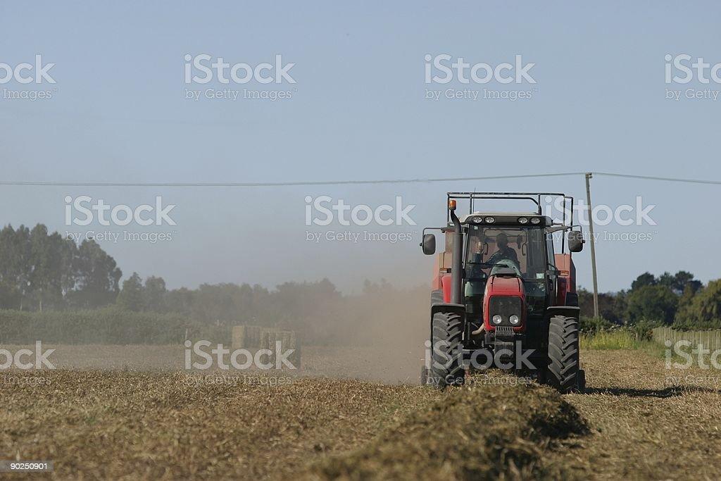 Bailing straw royalty-free stock photo