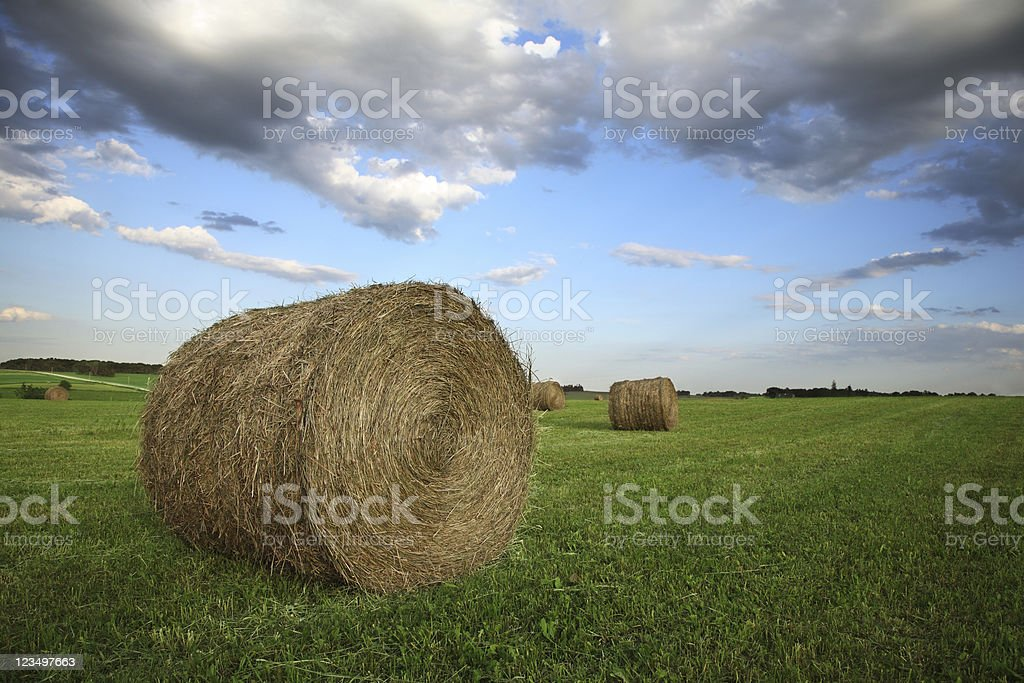 Bails of Hay royalty-free stock photo