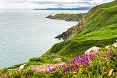 Baily Lighthouse in Howth peninsula, Co. Dublin, Republic of Ire