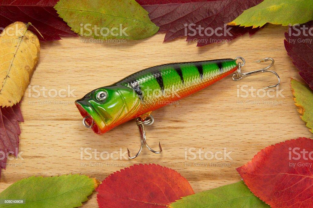 bait stock photo